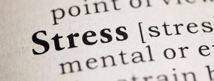 Online Gratis Training Stressvol verminderen. Lees er alles over in mijn blog.